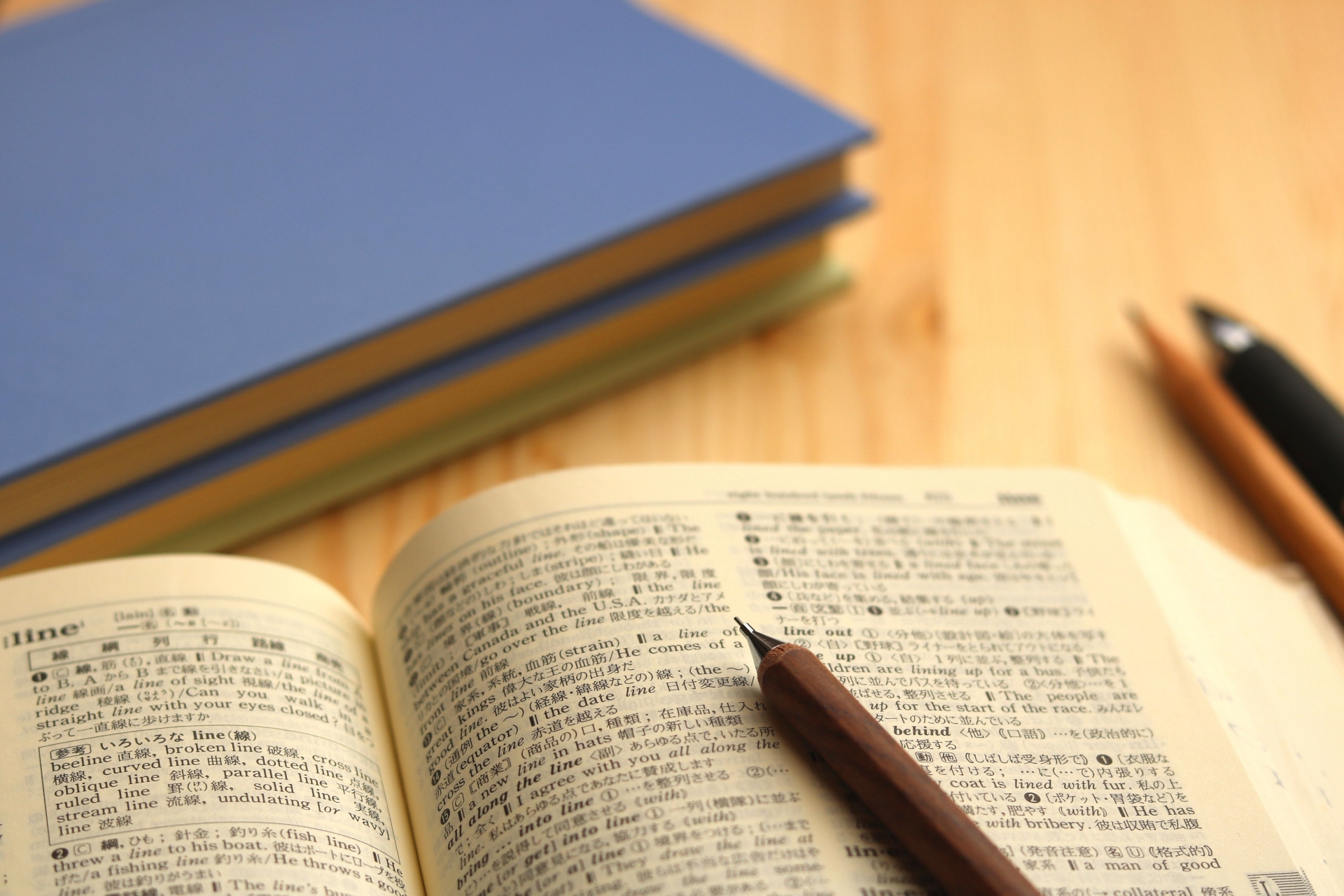 目の用語辞典