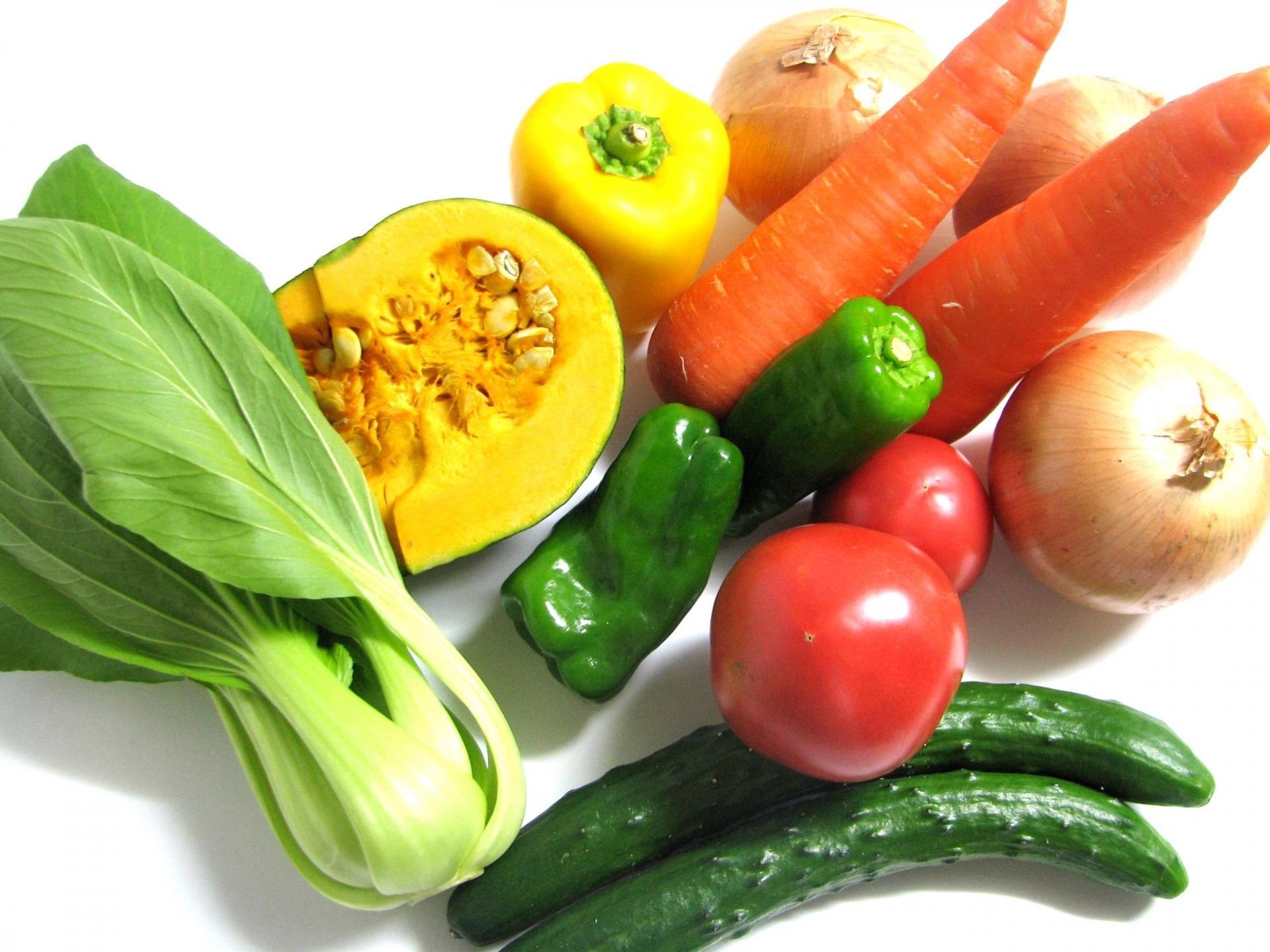 必要な栄養素